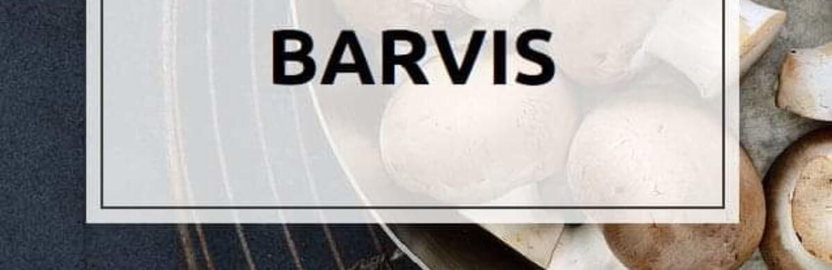 barvis.co88